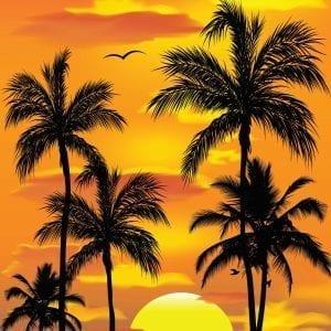 Beach/Sunset